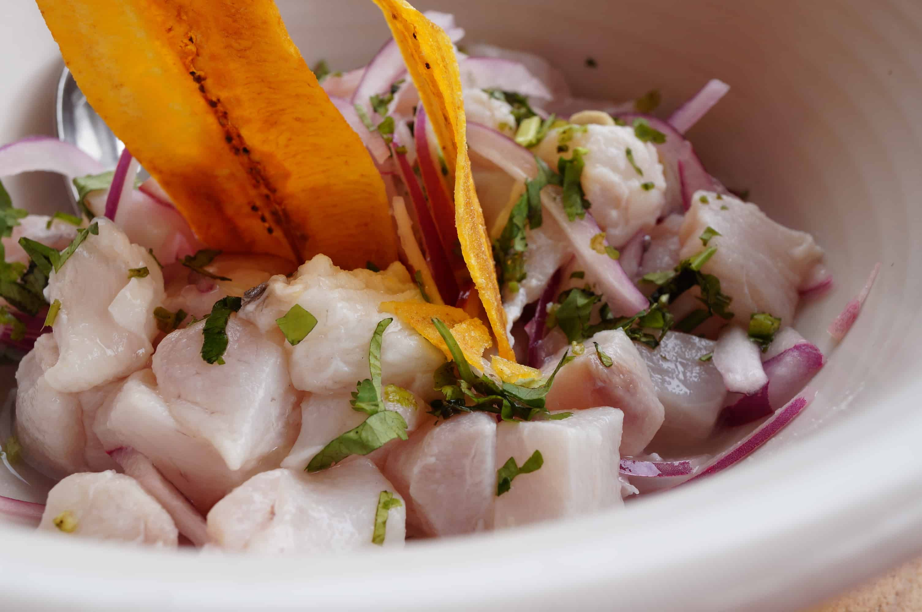 Raw fish ceviche with plantain chips