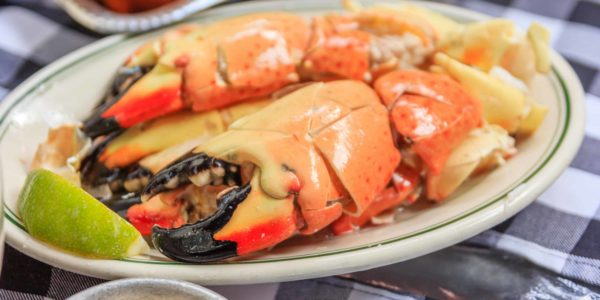 Stone crab claws with lemon butter and mustard on a plate as photographed in south beach miami florida