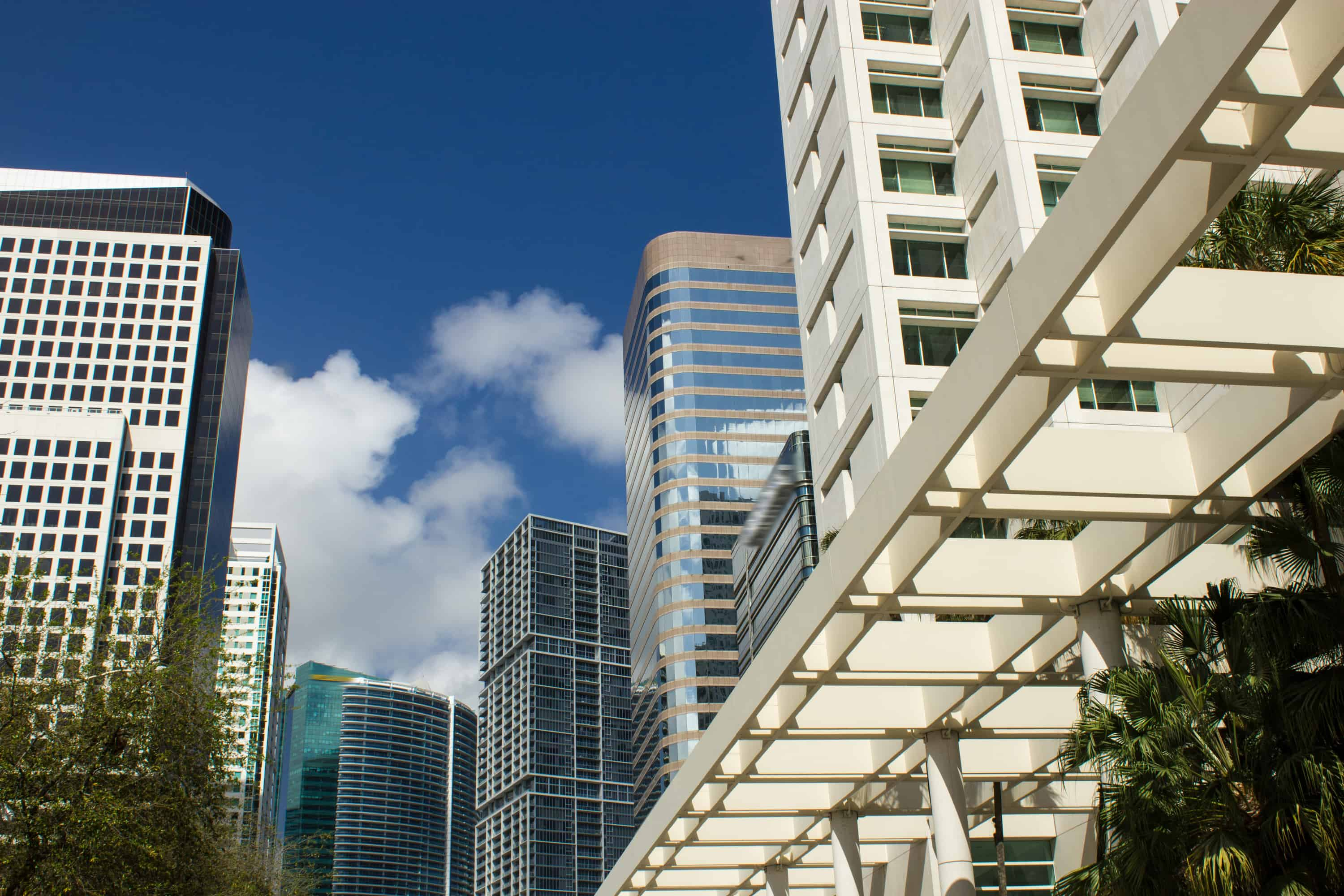 Business buildings in Miami Florida reaching for the sky
